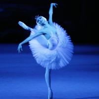 The Lark Theater Presents 'Bolshoi Ballet's SWAN LAKE Photo
