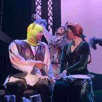 BWW Review: MSMT's Joyous SHREK, JR. Celebrates Difference and Diversity Photo