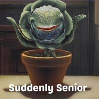 Student Blog: Suddenly Senior Photo