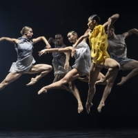 BWW Review: SYDNEY DANCE COMPANY: BONACHELA/NANKIVELL/LANE: 50TH ANNIVERSARY TRIPLE BILL at Dunstan Playhouse, Adelaide Festival Centre