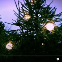 Plankton Wat Shares New Video for 'Nightfall' Photo