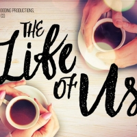 BWW REVIEW: THE LIFE OF US, Another Long Distance Love Story, With Songs And Skype Photo