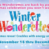 BWW Review: WINTER WONDERETTES Takes You On a Delightful Holiday Trip at Cumberland C Photo
