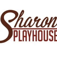 Sharon Playhouse Launches WRITERS PLAYGROUND Photo