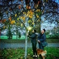 Wandsworth Arts Fringe Goes Green Photo