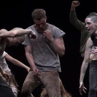 BWW Review: CROWD, Sadler's Wells