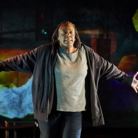 DCPA Theatre Company Presents The Broadcast Premiere Of Dael Orlandersmith's UNTIL THE FLO Photo