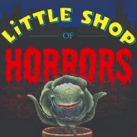 Student Blog: 'Little Shop' Visits 'The Tonight Show' Photo