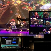 'All Together For Animals' Virtual Benefit Concert to Stream March 31 Photo