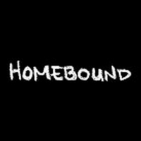 BWW Video: Episode Five of Round House Theatre's Webseries Homebound