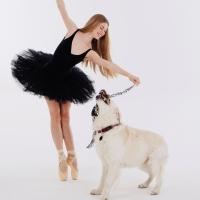 Dancers Love Dogs Returns to Artscape Opera House