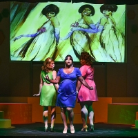 BWW Review: BEEHIVE at Candlelight Music Theatre Photo
