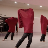 """VIDEO: Passion Fruit Dance Company Performs """"Trapped"""" by Tatiana Desardouin Photo"""
