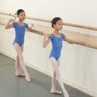 New York Theatre Ballet School Continues Online Classes August 3-28 Photo