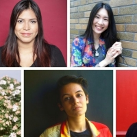 Nightwood Theatre Presents THE 35th ANNUAL GROUNDSWELL FESTIVAL Photo