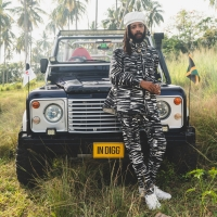 Protoje and Wiz Khalifa Collaborate on 'A Vibe' Photo
