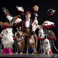 POPOVICH COMEDY PET THEATER Returns to the State Theatre In January Photo