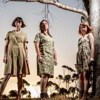 BWW Review: THE BLEEDING TREE at Ngunyawayiti Space, Tandanya National Aboriginal Cul Photo