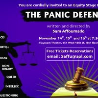 THE PANIC DEFENSE Will Have a Staged Reading at The Playroom Theater Photo