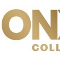 Disney General Entertainment Unveils Onyx Collective, a Dedicated, Premium Content Br Photo