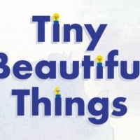 OpenStage Theatre & Company's TINY BEAUTIFUL THINGS Opens In 2 Weeks Photo