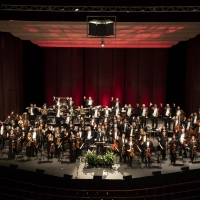 The Orlando Philharmonic Orchestra Names Melody Lynch as New President Photo