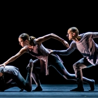 Midwest Trust Center Presents New Dance Partners at Yardley Hall Photo