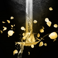 KSU's Theatre and Performance Studies To Present WATER BY THE SPOONFUL