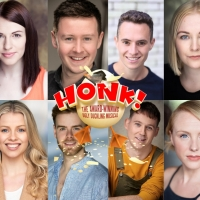 HONK! Will Be Staged Open-Air This Summer in the Grounds of Ely Cathedral Photo
