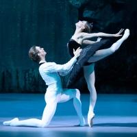 BWW Review: SWAN LAKE, Bolshoi Ballet in Cinema Photo