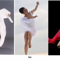 Nai-Ni Chen Dance Company Free Online Company Classes June 1-5, 2020 Photo