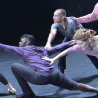 BWW Review: NEW DANCE PARTNERS at Carlsen Center Photo