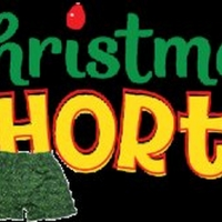 CHRISTMAS SHORTS Auditions This Weekend at The Children's Theatre Of Charleston! Photo