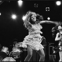 Queen Of Rock Tina Turner Takes Center Stage In Morrison Hotel Gallery's ONE WOMAN SH Photo