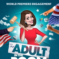 Orlagh Cassidy Will Star as Nancy Pelosi In New Play THE ADULT IN THE ROOM Photo