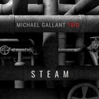 Michael Gallant Trio Release New Rock-Infused Single 'Steam' Photo