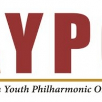 American Youth Philharmonic Orchestra Makes Transition to Virtual Learning Photo