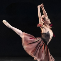 UofSC Dance to Host Top Talents of the NYC Ballet for 15th Annual Ballet Stars of New Photo