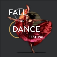 New York City Center Announces Virtual 2020 Fall for Dance Festival Photo