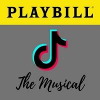 BWW Blog: TikTok... the Musical? Photo