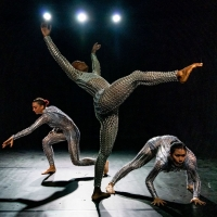 Arts On Site Announces September Performance Schedule Photo