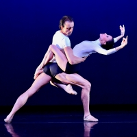 Chamber Dance Offers Free Zoom On Contemporary Ballet