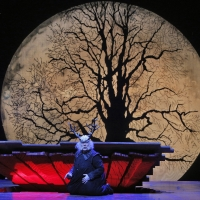 San Francisco Opera Announces January/February Schedule of Free Streams Photo