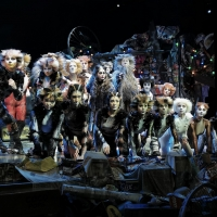 Photo Coverage: CATS Opens Four-Week Limited Engagement in Manila, Now Thru 1 Dec. Photos