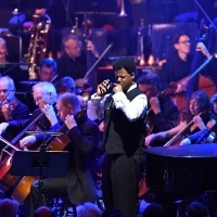 BWW Review: PROM 11: THE SOUND OF A SUMMER, Royal Albert Hall