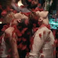 BWW Review: AVIVA - DANCE FILM at Virtual Theatrical Premier Photo