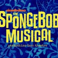 Pantochino Presents THE SPONGEBOB MUSICAL In Fairfield Next Month Photo