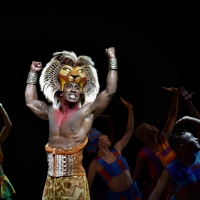 THE LION KING Plays in Hong Kong For The First Time! Here's Your First Look! Photo