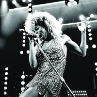 Broadway Jukebox: Shimmy and Shake to the Music of Tina Turner! Photo