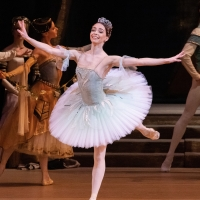 The Bolshoi Ballet's Production of RAYMONDA Comes to The Ridgefield Playhouse In HD On The Big Screen